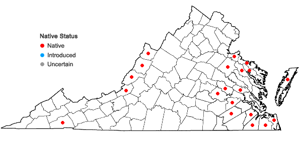 Locations ofCarex canescens L. var. disjuncta Fernald in Virginia