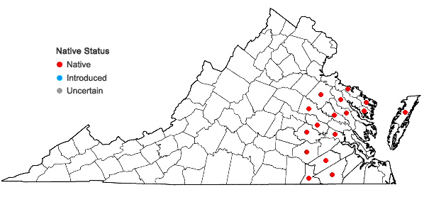 Locations ofCarex collinsii Nuttall in Virginia