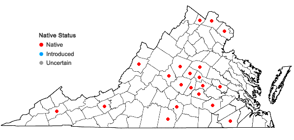 Locations ofCarex conjuncta Boott in Virginia