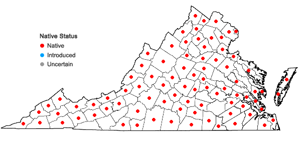 Locations ofCarex frankii Kunth in Virginia