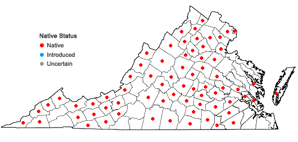 Locations ofCarex gracillima Schw. in Virginia