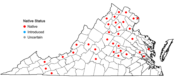 Locations ofCarex grisea Wahlenb. in Virginia