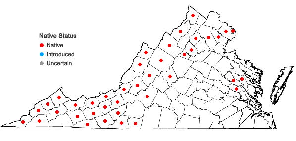 Locations ofCarex gynandra Schweinitz in Virginia