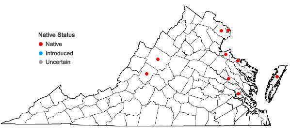 Locations ofCarex lacustris Willdenow in Virginia