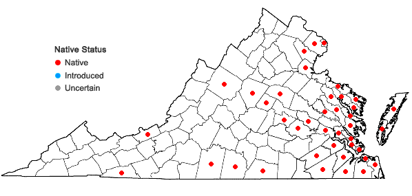Locations ofCarex longii Mackenzie in Virginia