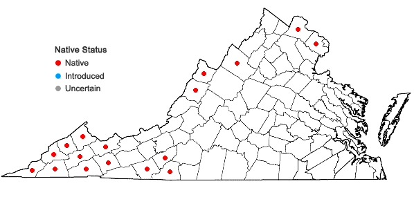 Locations ofCarex plantaginea Lam. in Virginia