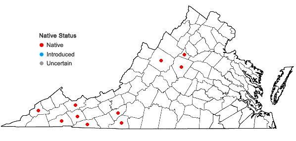 Locations ofCarex roanensis F.J. Hermann in Virginia