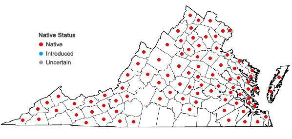 Locations ofCarex swanii (Fernald) Mackenzie in Virginia