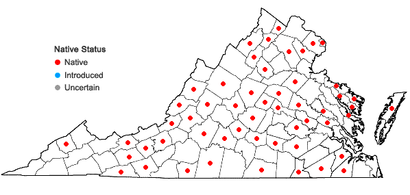 Locations ofCarex tonsa (Fernald) Bicknell in Virginia
