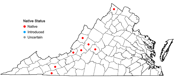 Locations ofCarex vesicaria L. in Virginia