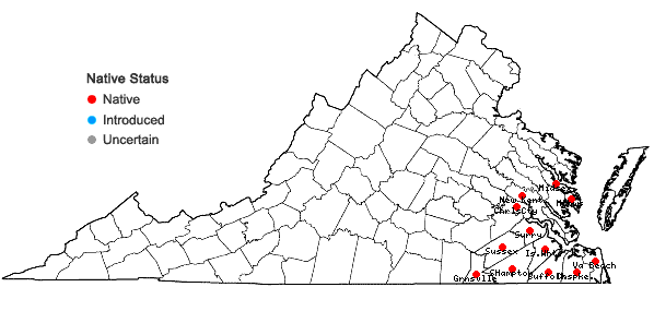 Locations ofCarya aquatica (Michx.f.) Nutt. in Virginia