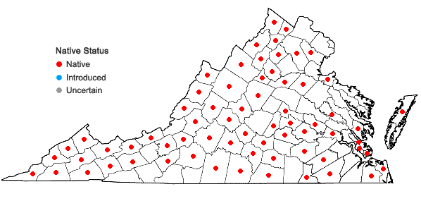 Locations ofCarya ovata (P.Mill.) K. Koch in Virginia