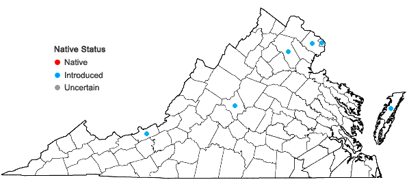 Locations ofCastanea mollissima Blume in Virginia