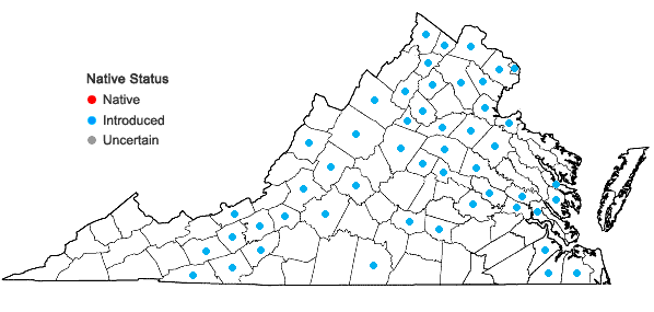 Locations ofCelastrus orbiculatus Thunb. in Virginia