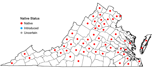 Locations ofCeltis tenuifolia Nutt. in Virginia