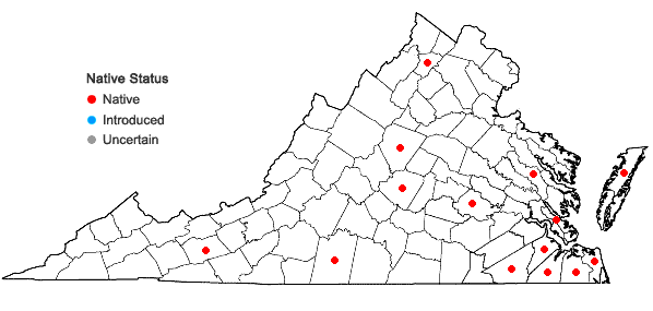Locations ofCenchrus incertus M.A. Curtis in Virginia