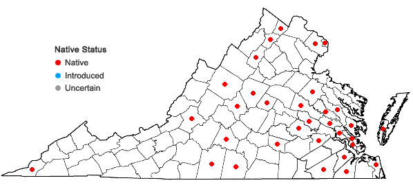 Locations ofCenchrus longispinus (Hack.) Fern. in Virginia
