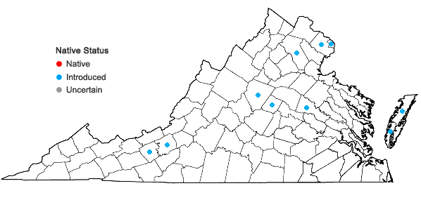 Locations ofCenchrus purpurascens Thunb. in Virginia
