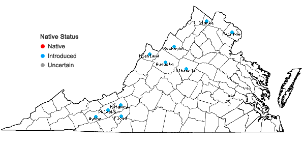Locations ofCentaurea jacea L. in Virginia