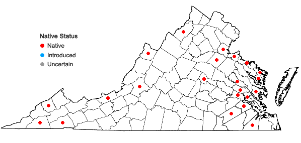 Locations ofCephalozia bicuspidata (L.) Dumort. in Virginia