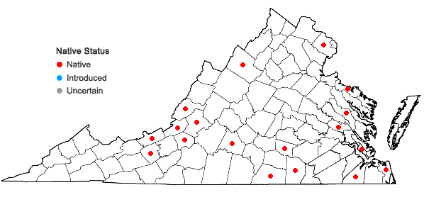 Locations ofCephaloziella divaricata (Sm.) Schiffn. in Virginia