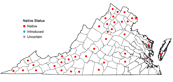 Locations ofCerastium nutans Raf. var. nutans in Virginia