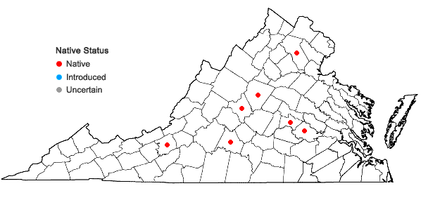 Locations ofChaerophyllum procumbens (L.) Crantz var. shortii Torr. & Gray in Virginia