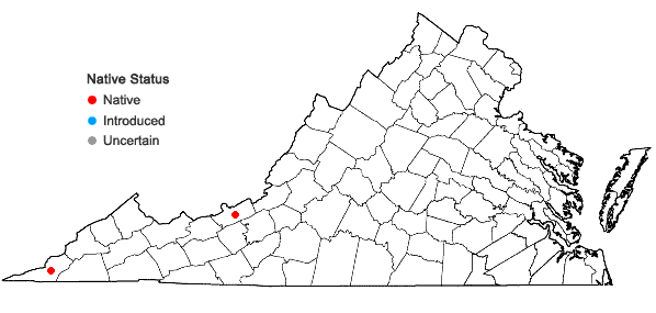 Locations ofCheilanthes alabamensis (Buckl.) Kunze in Virginia