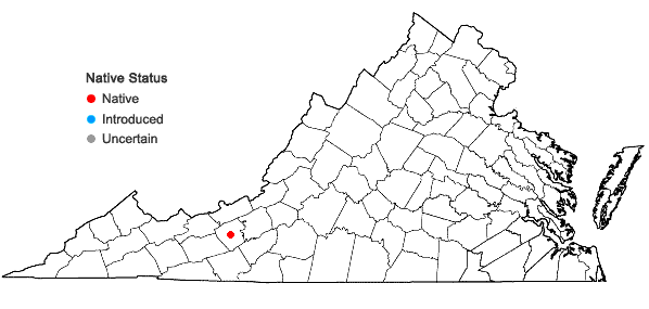 Locations ofCheilanthes feei T. Moore in Virginia