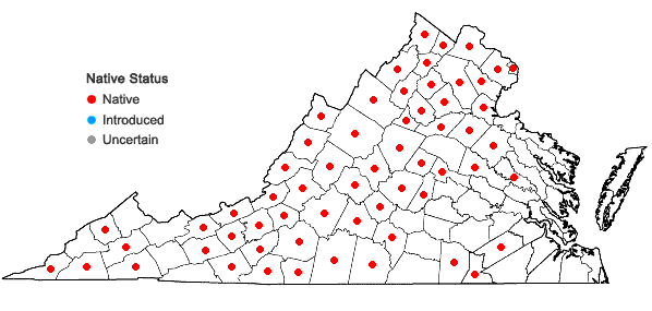 Locations ofCheilanthes lanosa (Michx.) D.C. Eat. in Virginia