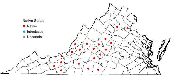 Locations ofCheilanthes tomentosa Link in Virginia