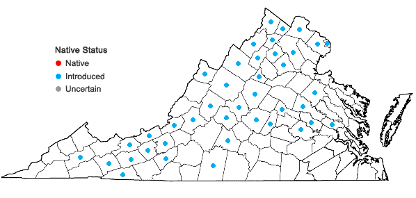 Locations ofChelidonium majus L. in Virginia