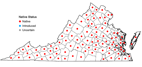 Locations ofChelone glabra L. in Virginia