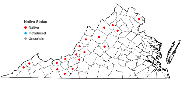 Locations ofChenopodium simplex (Torr.) Raf. in Virginia