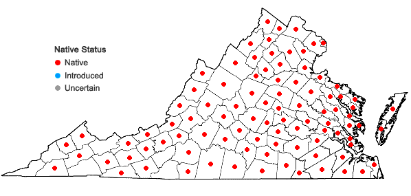 Locations ofChionanthus virginicus L. in Virginia