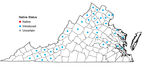 Locations ofCirsium arvense (L.) Scop. in Virginia