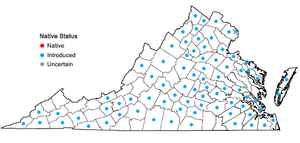 Locations ofCirsium vulgare (Savi) Ten. in Virginia