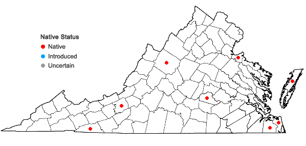 Locations ofCladium mariscoides (Muhl.) Torrey in Virginia