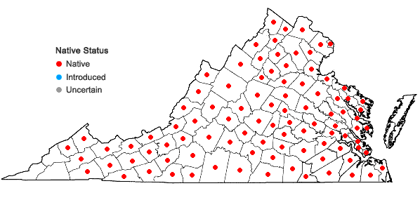 Locations ofClaytonia virginica L. in Virginia