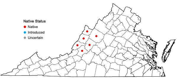 Locations ofClematis albicoma Wherry in Virginia
