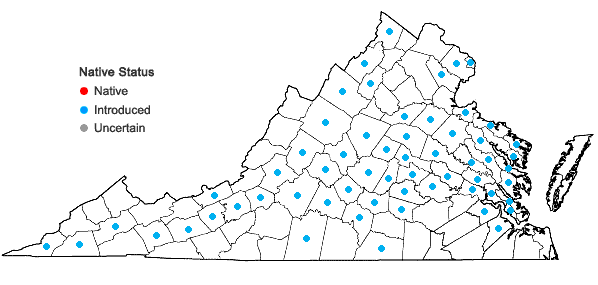 Locations ofClinopodium calamintha (L.) Stace in Virginia