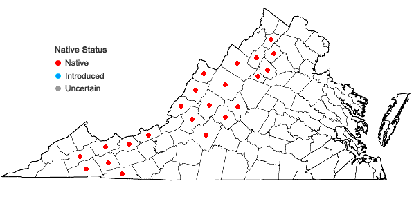 Locations ofClintonia borealis (Ait.) Raf. in Virginia
