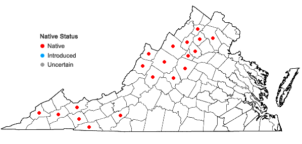 Locations ofCoeloglossum viride (L.) Hartman in Virginia