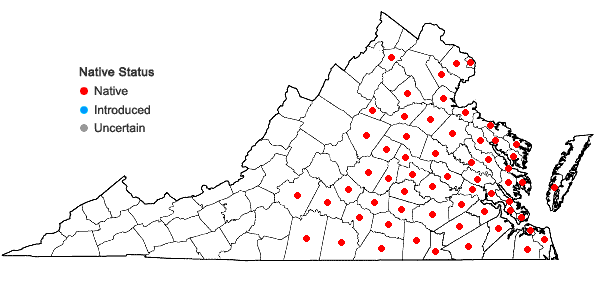 Locations ofCommelina virginica L. in Virginia