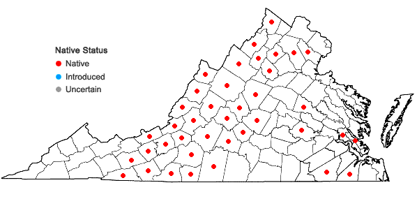Locations ofComptonia peregrina (L.) Coult. in Virginia