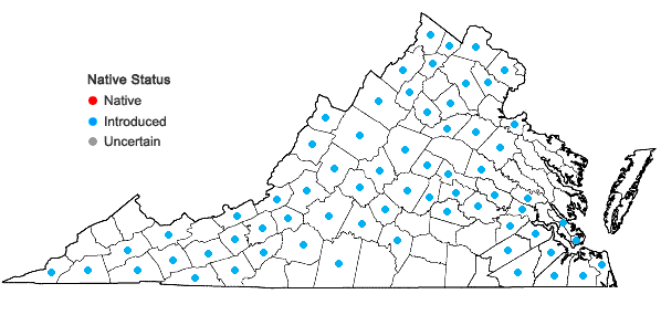 Locations ofConium maculatum L. in Virginia