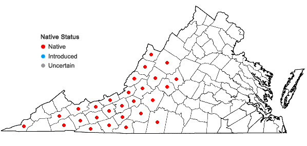 Locations ofConvallaria pseudomajalis Bartram in Virginia