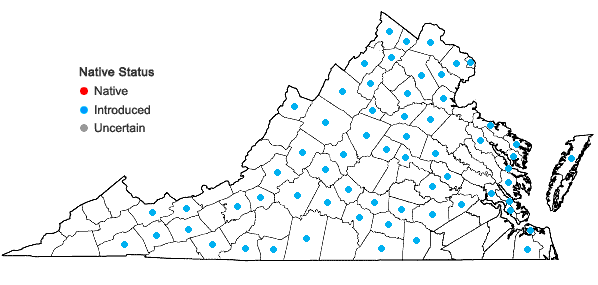 Locations ofConvolvulus arvensis L. in Virginia