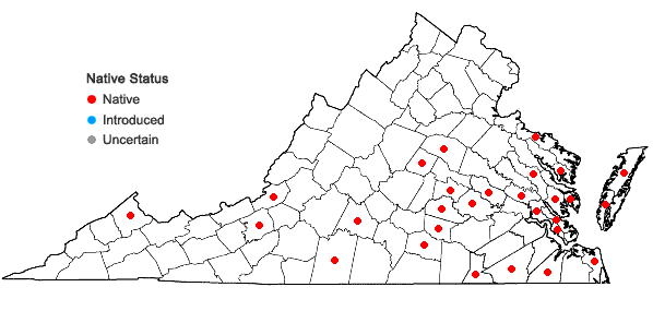 Locations ofConyza canadensis (L.) Cronq. var. pusilla (Nutt.) Cronq. in Virginia
