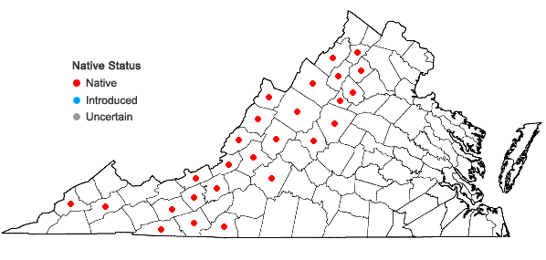 Locations ofCorallorhiza maculata (Raf.) Raf. var. maculata in Virginia